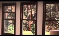 Marvin's Next Generation Double Hung Window  A Classic, Reinvented